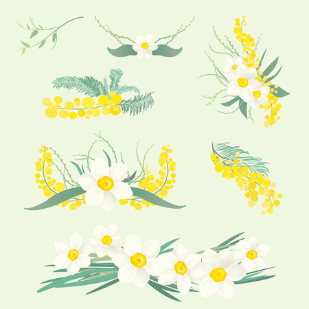 Floral illustrations set of brunches and bouquets of mimosa and narcissus flowers