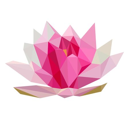 Colorful polygonal style design of pink lotus flower 矢量图像
