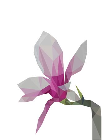Colorful polygonal style design of magnolia flower