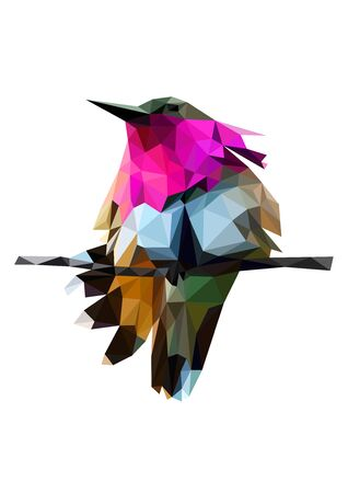 Colorful polygonal style design of tropical bird with pink neck