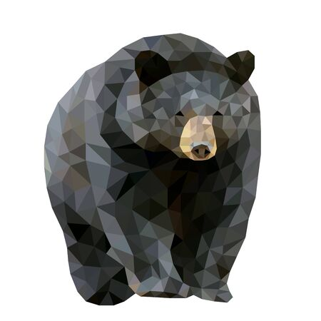 Low poly wild vector black bear Vektorové ilustrace