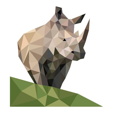 Polygon origams lines wild rhino Vetores
