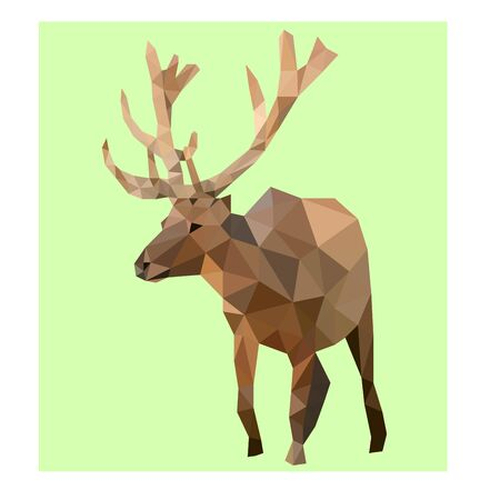 Low poly illustration of deer