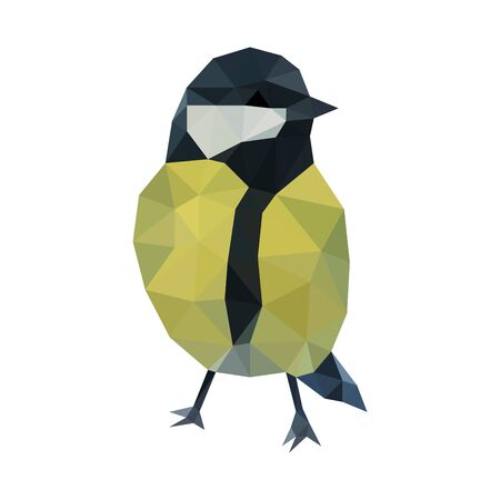 Colorful polygonal style design of titmouse