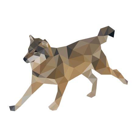 Colorful polygonal vector style design of wolf Archivio Fotografico - 129151006