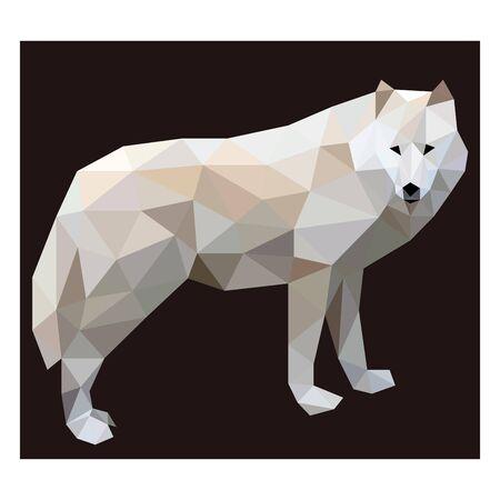 Colorful polygonal style design of wolf Archivio Fotografico - 129151008