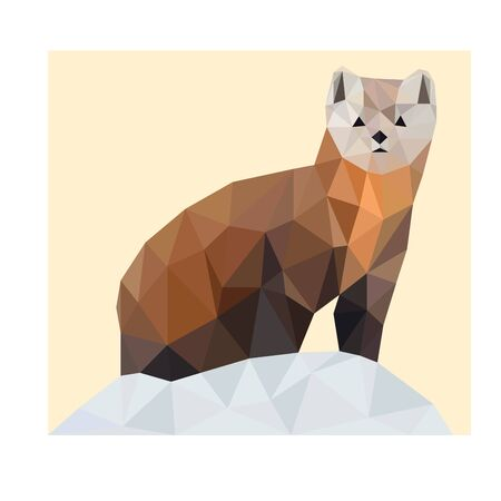 Colorful polygonal style design of marten