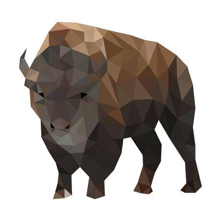 Low poly illustration of buffalo
