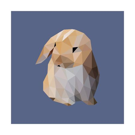 Low poly illustration of rabbit