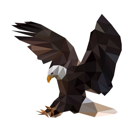 Low poly illustration of black eagle