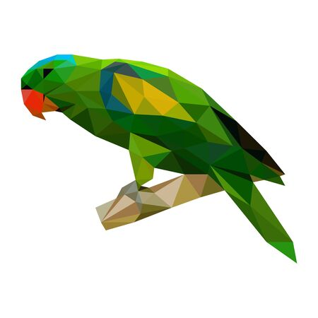 Polygonal wild color green parrot