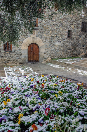 Beautiful street of Andorra la Vella city caught by sudden snow. Blooming colorful live flowers under snow cover at foreground. General Council of Andorra based at historical stone house at background.