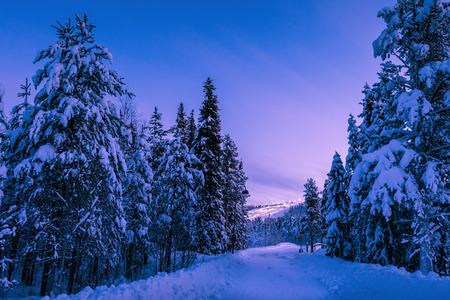 Winter sunset landscape. Empty road running through fir forest covered by snow in Lapland, Finland. Illuminated mountain ski slope of Levi ski resort at background. Seasonal greeting card background. Stock Photo