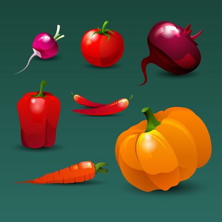 useful: Set of fresh, useful and delicious vegetables red color. Radish, tomato, beetroot, paprika, chili pepper, carrots and pumpkin. Healthy lifestyle, dietetic food and vegetarian. Vector illustration