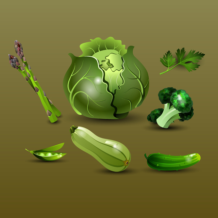 dietetic: Set of fresh, useful and delicious vegetables green color. Cabbage, parsley, asparagus, pea, broccoli, zucchini and cucumber. Healthy lifestyle, dietetic food and vegetarian. Vector illustration