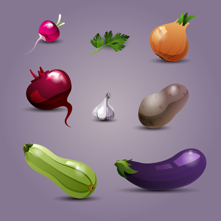 useful: Set of fresh, useful and delicious vegetables. Radishes, parsley, onions, beets, garlic, potatoes, zucchini and eggplant. Healthy lifestyle, dietetic food and vegetarian. Vector illustration