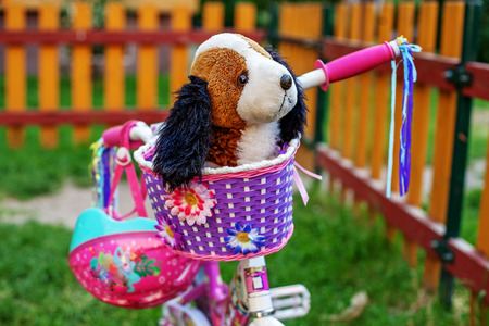 Pink bicycle with basket and dog. The concept of kids and lifestyle.preschool