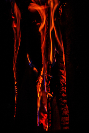 Fire. Background. The concept of nature.
