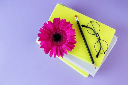 Interesting books, pencil and glasses. Concept back to school, education, international book day, hobby. 写真素材