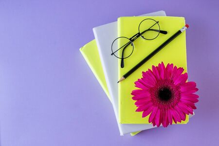 Interesting books, pencil and reading glasses and flower. Concept back to school, education, international book day, hobby.