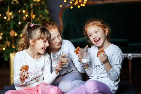 Children girls tell funny stories to each other. Sisters drink milk, eat cookies near the Christmas tree. Sisters in pajamas. The concept of Merry Christmas, holidays, New Year, family and gifts. 写真素材