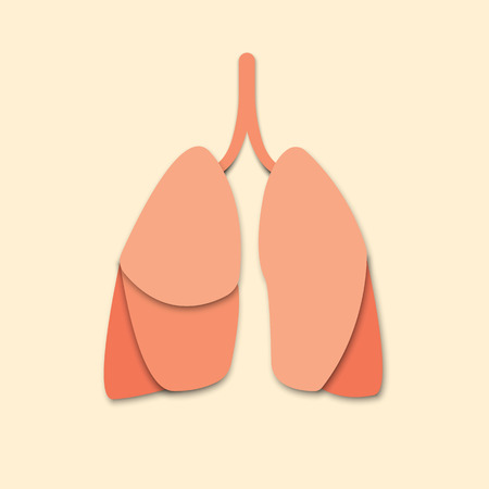 3d abstract paper cut illlustration of lungs isolated on the background. Vector poster or banner template. Eps10.