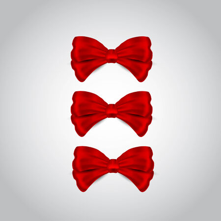 Nice red bow on the grey background Vector