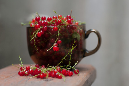 organic raspberry: nice and tasty red currants in the brown glass cup Stock Photo
