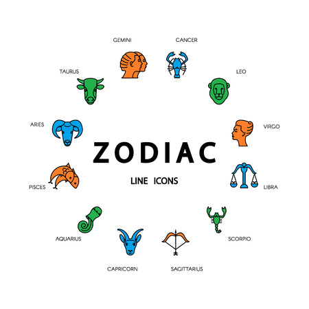 zodiacal: Thin line vector zodiacal symbols. Astrology, horoscope sign, graphic design elements, printing template. Zodiac Signs  isolated on background. Illustration