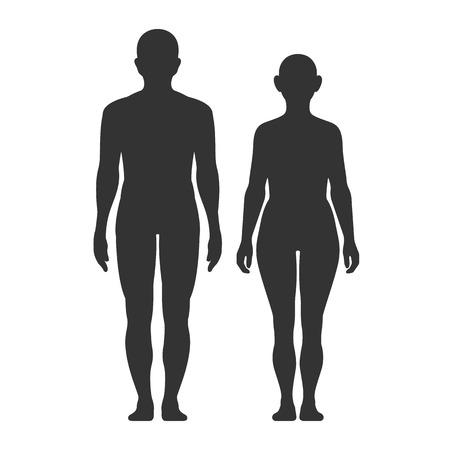 Sagome di uomini e donne su sfondo bianco. Infografica vettoriale medica. Anatomia medica. Simbolo di vettore.