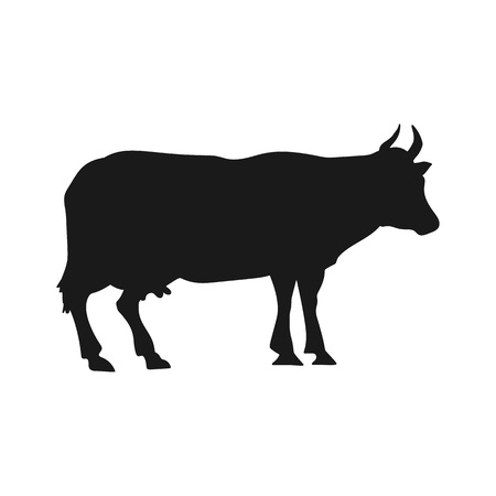 Vector silhouette of cows, isolated on white background. Ilustracje wektorowe