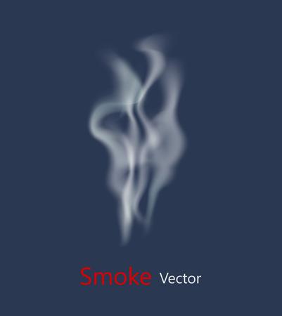 fondo transparente: Vector de humo en el fondo transparente. Ilustraci�n vectorial