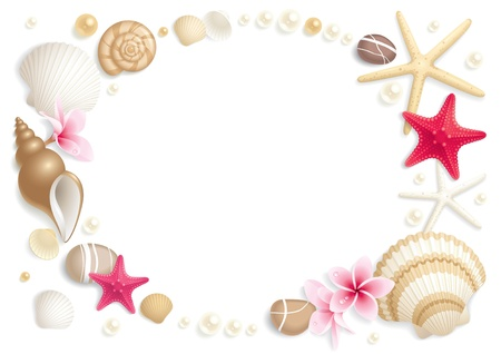 pearl shell: Background with seashells and starfishes making a frame for any text
