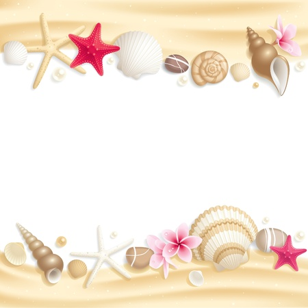 pink plumeria: Background with seashells and starfishes making a frame for any text