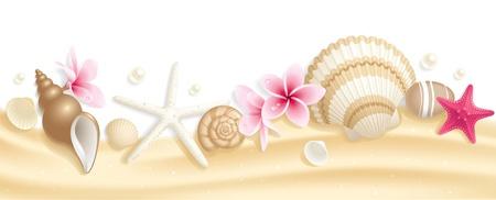 estrella de mar: Encabezado de verano con conchas marinas y starfishes en la arena Vectores