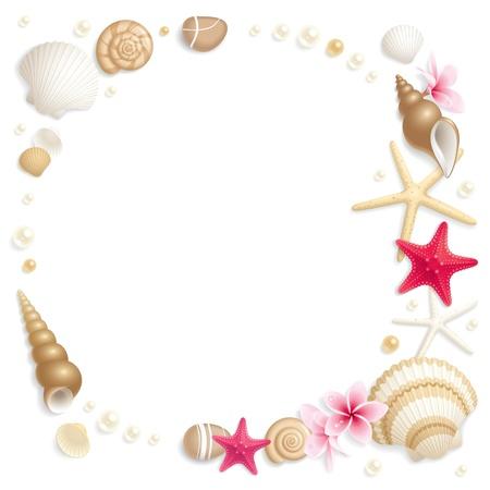 estrella de mar: Fondo con conchas marinas y starfishes haciendo un marco de texto Vectores