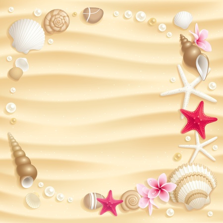 Frame of seashells and starfishes on the sand Vector