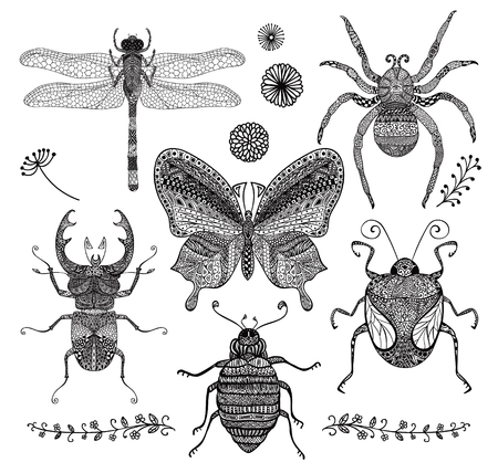Collection of Six Black Hand Drawn Doodle Insects. Decorative Dragonfly, Butterfly, Spider, Stag-beetle, Bugs with Hand Drawn Patterns, Illustartion for Adult Coloring Books or Tattoos.