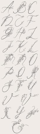 Vector Hand Drawn Flowered Alphabet Monogram and logo Illustration