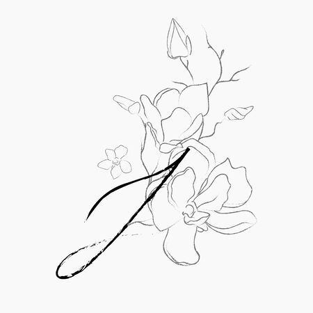 Handwritten Floral Logo Template. Line Drawing Monogram J with Magnolia Flower, Plants, Branches, Leaves. Design Element Vector Illustration. Branding. Wedding, photography, art, studio