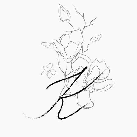 Modello di logo floreale scritto a mano. Monogramma di disegno a tratteggio K con fiore di magnolia, piante, rami, foglie. Illustrazione di vettore dell'elemento di progettazione. Marchio. Matrimonio, fotografia, arte, studio