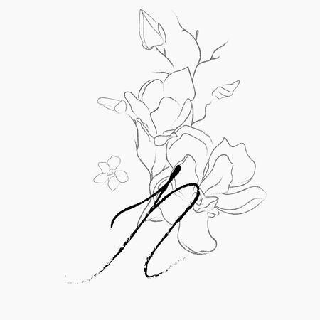 Handwritten Floral Logo Template. Line Drawing Monogram N with Magnolia Flower, Plants, Branches, Leaves. Design Element Vector Illustration. Branding. Wedding, photography, art, studio