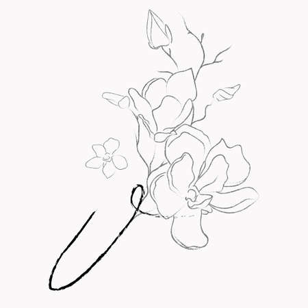 Handwritten Floral Template. Line Drawing Monogram V with Magnolia Flower, Plants, Branches, Leaves.