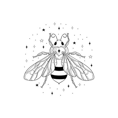 Abstract black honey bee vector illustration and logo design element with stars. Stock Illustratie