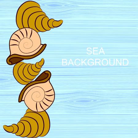 floorboards: Patr�n de frontera de conchas de mar en un azul en entarimados pintadas de blanco
