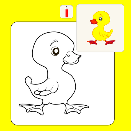 duckling: Coloring Book or Page Cartoon Illustration of duckling for Children