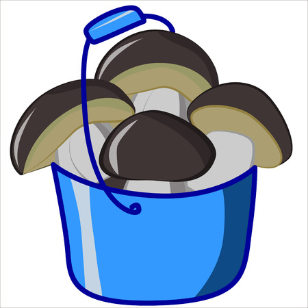 cep: Vector isolated illustration, cute cartoon of ceps in blue bucket Illustration