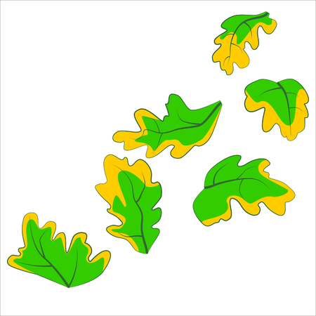 fall down: Vector isolated illustration, leaves fall down.