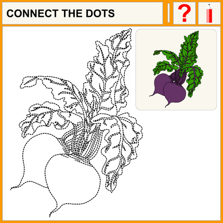 beetroot: Connect the dots. Beetroot. Flat Design Style. Vector illustration. Cartoon vector Illustration.