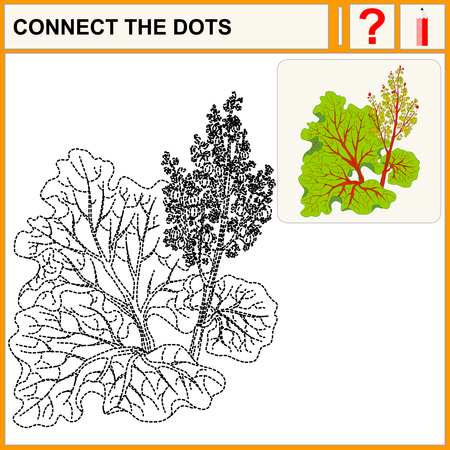 rhubarb: Connect the dots, preschool exercise task for kids. Picture rhubarb stalks harvested and vector isolated. Rhubarb isolated. Illustration